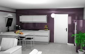 mur cuisine aubergine cuisine grise et aubergine salon gris 13 deco mauve homewreckr co