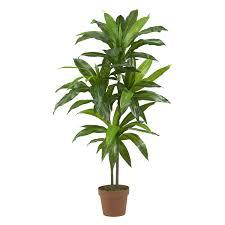 design beautiful indoor plants ideas 23180