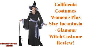 california costumes women u0027s plus size incantasia glamour witch