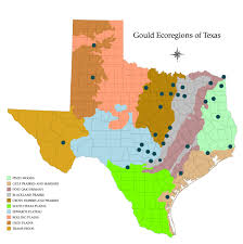 native plants of south texas who we are native plant society of texas