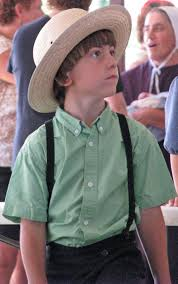 822 best amish life images on pinterest amish country amish