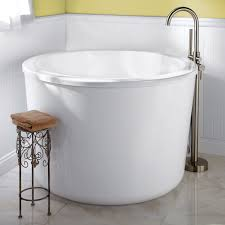 Bathroom Ideas Nz by Guest Bathrooms Tubs And Showers On Pinterest Idolza