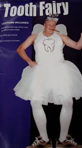 Tooth Fairy Costume Costumes