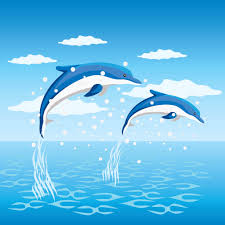 do whales and dolphins see blue pitara kids network