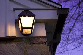 Are Spiders Attracted To Light How To Get Rid Of Stink Bugs 10 Tips To Control Pests