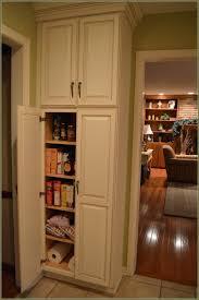 antique kitchen pantry storage cabinet
