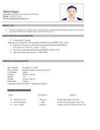 sample resume format for job application sample resume for