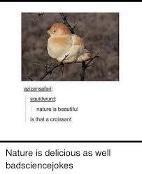Croissant Meme - azizansafar sguidwurd nature is beautiful is that a croissant nature