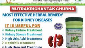 high uric acid foods dietary changes to lower uric acid medicine