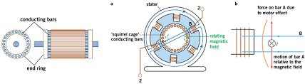How Induction Cooktop Works Hsc Physics Syllabus Dot Point Summary Motors And Generators