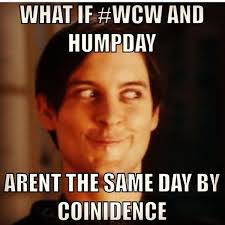 Hilarious Meme - happy hump day meme images and pics