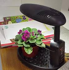 african violet grow light an intelligent indoor plant light garden org