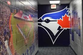 sports facility wall mural designs by oai visual branding florida international university