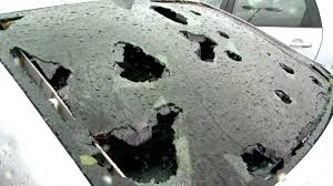 Colorado Mills Mall Map by 9news Colorado Mills Mall In Lakewood Closes As Hail Damages Roof