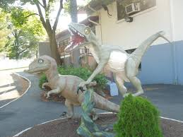 photos for velociraptor allosaurus statues yelp