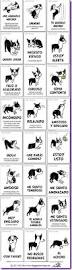 20 Logos With Hidden Messages Logomyway Blog 139 Best French Bulldog Images On Pinterest French Bulldog