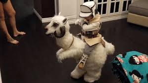this little boy u0027s tauntaun halloween costume is insanely