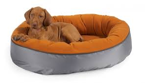 Dog Sofas For Large Dogs by Nice Dog Beds For Large Dogs U2014 Jen U0026 Joes Design Dog Beds For