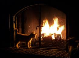 how to make a fire in a fireplace dact us