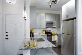 Austin Texas One Bedroom Apartments Bedroom Amazing The Crescent Rentals Austin Tx Apartments One