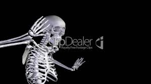 halloween dancing skeleton skeleton disco dancing zoom out alpha cgi royalty free video