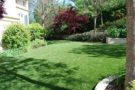 Alternative To Grass In Backyard by Benefits Of Artificial Turf Saving Your Time Saving The Ecosystem