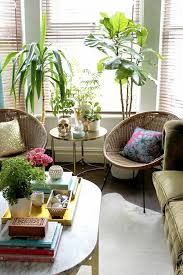 room with plants decorating your living room with plants meliving 868453cd30d3