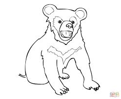 sun bear clipart outline pencil and in color sun bear clipart