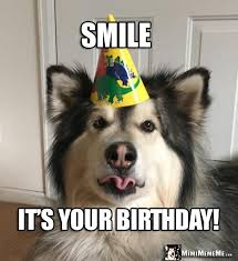 Birthday Meme Dog - party dog making a funny face says smile it s your birthday