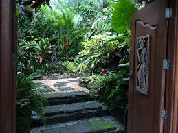 tropical garden tropical path dennis hundscheidt pinterest