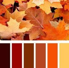 autumn color palette green yellow orange and red color