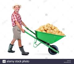 gardening emoji gardener funny cut out stock images u0026 pictures alamy