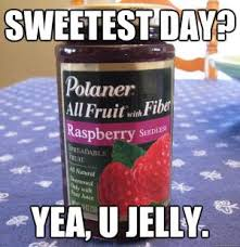 You Jelly Bro Meme - jelly jokes kappit