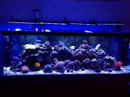 current usa orbit marine aquarium led light led light manufacturer s and model list page 4 reef2reef