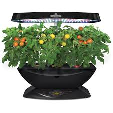 miracle gro aerogarden 7 led with gourmet herb seed pod kit