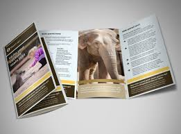 zoo u0026 wild animal park brochure template mycreativeshop