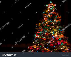 Colored Christmas Lights by Snow Covered Christmas Tree Multi Colored Stock Photo 210794914
