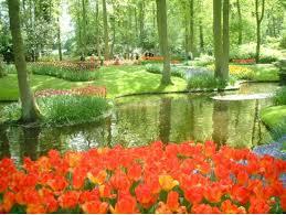 keukenhof gardens entrance tickets u0026 tulip fields day tour from