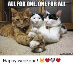 Happy Weekend Meme - all for one one for all cute cat pics v happy weekend