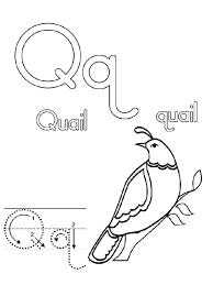 Quail Coloring Page Letter Q Preschool Letter Q Is For Quail Coloring Pages Q