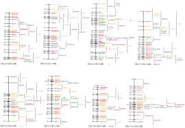 Linkage Map An Enhanced Linkage Map Of The Sheep Genome Comprising More Than