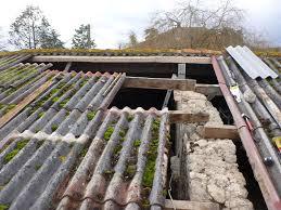 more barn roofing work grasspunk