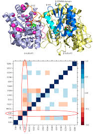 catalysts free full text investigation of structural dynamics