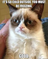 It S So Cold Meme - it s so cold the burning platform