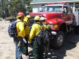 Type 1 Wildfire Definition by Wildland Fire Training Nebraska Forest Service