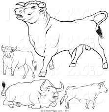 royalty free farm animal stock coloring page designs