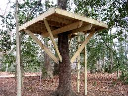 two tree treehouse plans a two level tree house for the grandsons