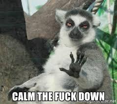 Calm The Fuck Down Meme - calm the fuck down not today lemur meme generator
