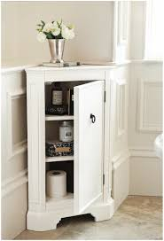 bathroom magnificent storage cabinets in designing a delectable