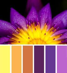 Colors That Match With Purple 49 Best Color Matching Images On Pinterest Colour Palettes